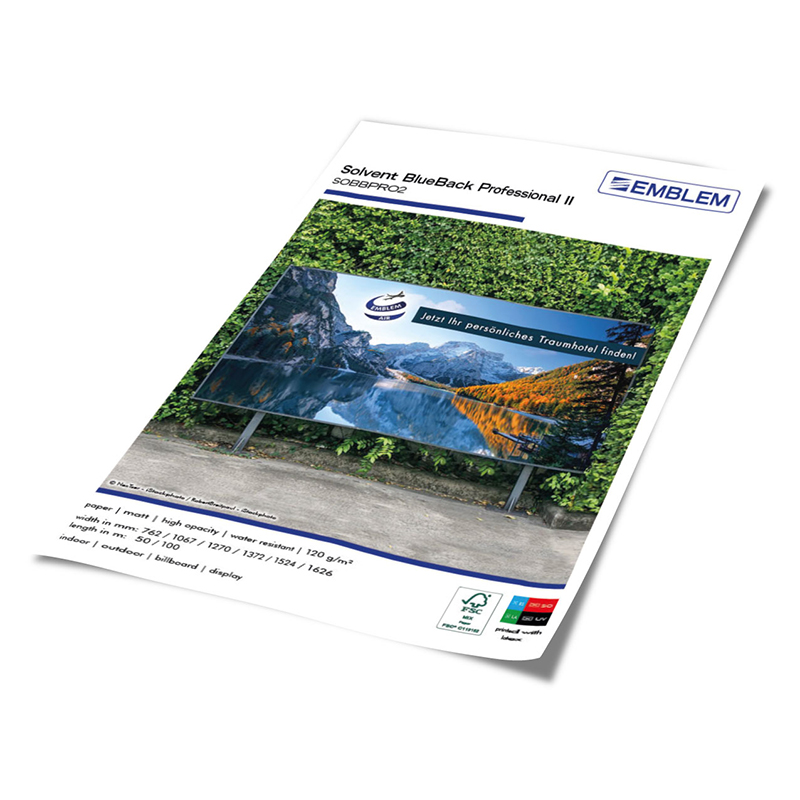 Solvent BlueBack Professional II
